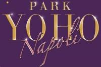PARK YOHO NAPOLI PARK YOHO NAPOLI(峻巒2B)